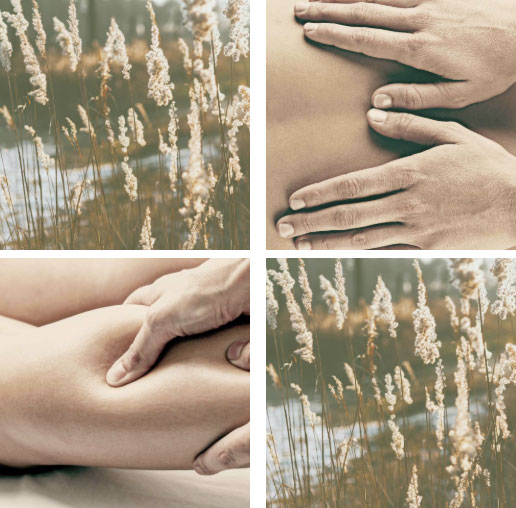 Catherine Bird Remedial Massage Therapy