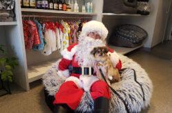 Santa at Greythorn